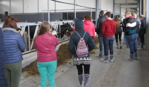 8 Dairy Campus